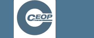 Has someone done something online that has made you or a child or young person you know, feel worried or unsafe?  Make a report to one of CEOP's experienced Child Protection Advisors.